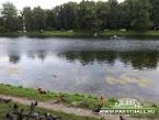 Екатерининский (сад) парк - Лето